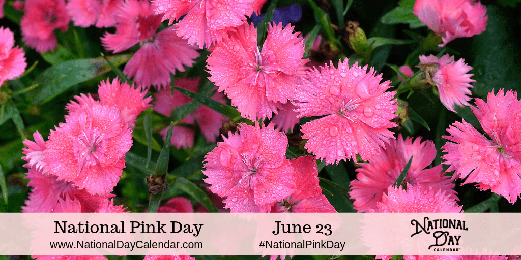 Official wear pink day