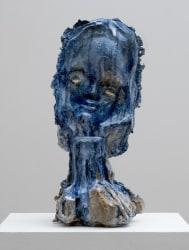 Johan Tahon, Arctic Face