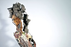 Pim Palsgraaf, Multi structure 01