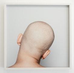 Patricia Werneck Ribas, Head (2)