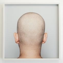 Patricia Werneck Ribas, Head (4)