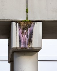 Anastasia Samoylova, Concrete Erosion