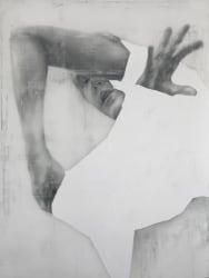 Anthony Goicolea, Anonymous Self Portrait XXIII