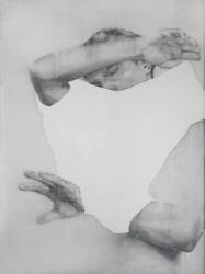 Anthony Goicolea, Anthony Goicolea, Anonymous Self Portrait XXVIII