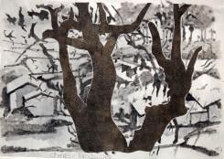 Ton Kraayeveld, Chinese Landscape