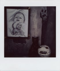 Roger Ballen, Untitled #075-2