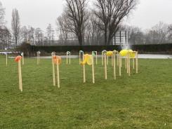 Marinke van Zandwijk, Hordebellen