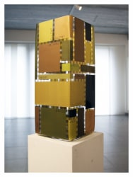 Tom Woestenborghs, Dissection of a 20000 cm3 vessel, 15202 cm3 cubes