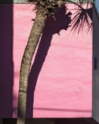 Anastasia Samoylova, Miami Pink