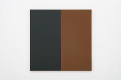Steven Aalders, Two Halves (Green, Brown)