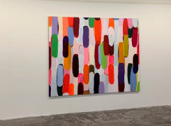 Art The Hague 2019, Geert Baas, Hieke Luik, Frank Halmans, Warffemius, Ien Lucas, D.D. Trans