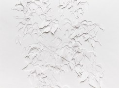 Drawing Festival, Niels Janssen, Romy Muijrers, Henri Plaat, Stephan van den Burg, Hans van der Ham, Sigrid van Woudenberg, Zaida Oenema, Tanja Smit, Robin Kolleman, Hans Lemmen