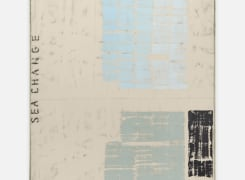 Art Rotterdam 2020, Mia Chaplin, Jamal Nxedlana, Arash Fakhim, Fabian Herkenhoener