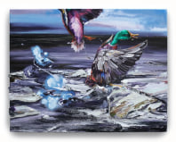 Gé-Karel van der Sterren, Duck Time #2