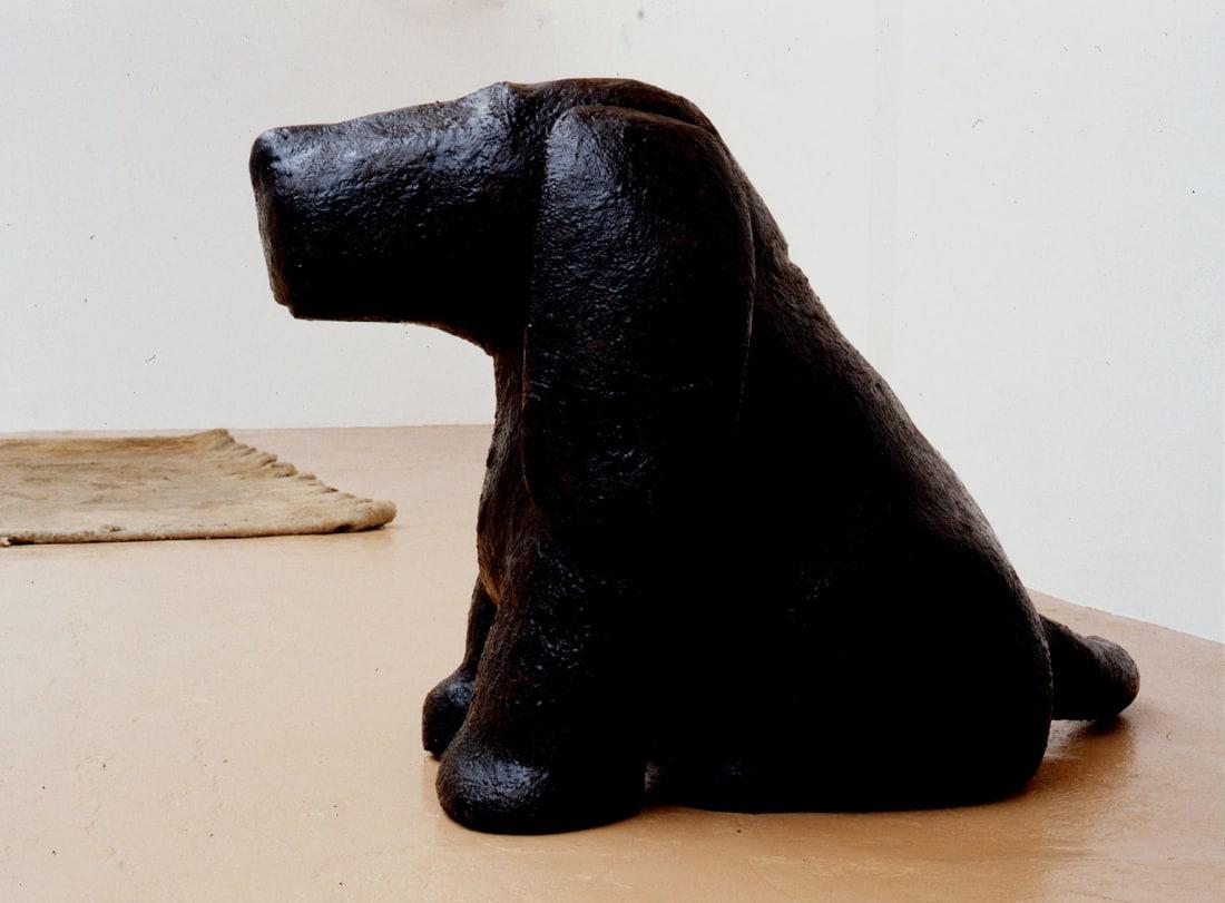 Tom Claassen - Animals, Tom Claassen,