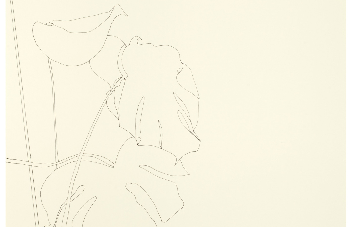 Art on Paper, Amsterdam | 2019, Ronald de Bloeme, Rakuko Naito, Ronald Zuurmond,
