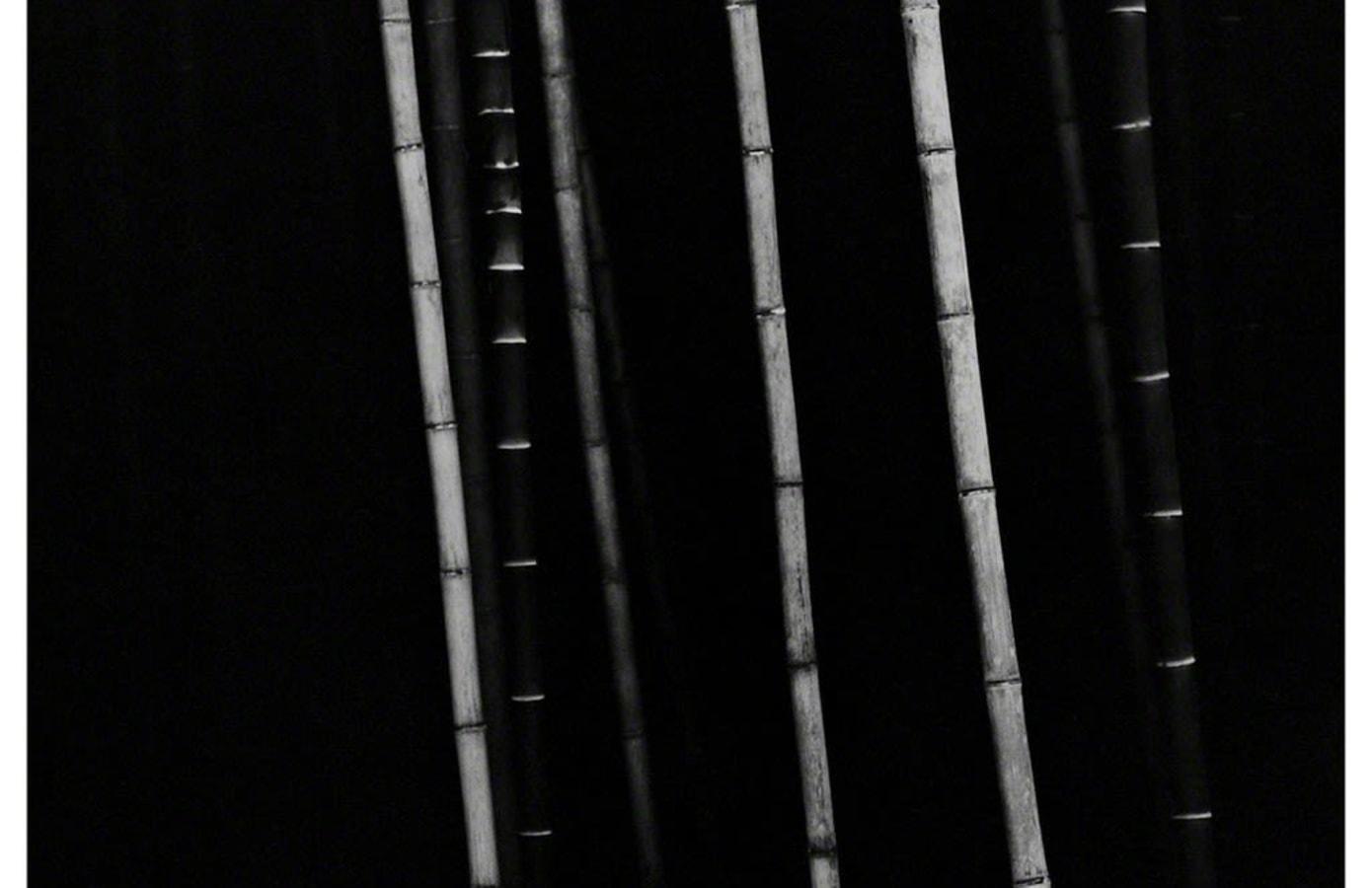 Bamboo, Choi Byung-Kwan,