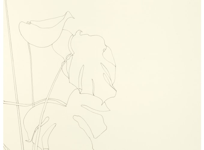 Art on Paper, Amsterdam | 2019, Rakuko Naito, Ronald de Bloeme, Ronald Zuurmond,