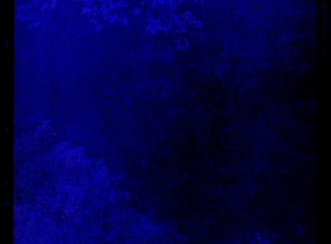 SEASONS DWELLING, Robert Polidori, Simone Hoang, Ruben Terlou, Marchand & Meffre, Max Kraanen, Tilman, Jehoshua Rozenman, Feipel & Bechameil,