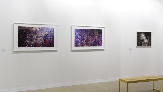 Art Basel 2019, David Claerbout, Annet Gelink Gallery