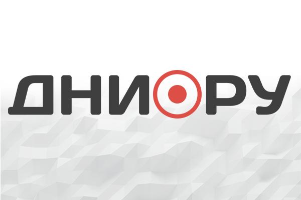 Свежие новости россии украины и мира