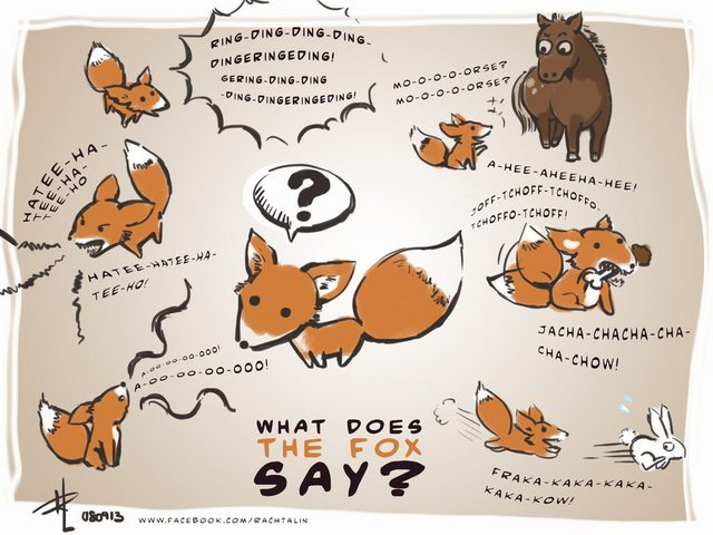 Что говорят лисички