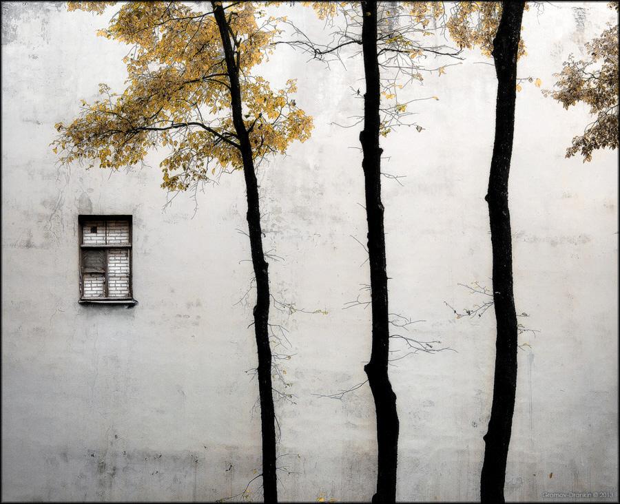 Фото Игоря Громова