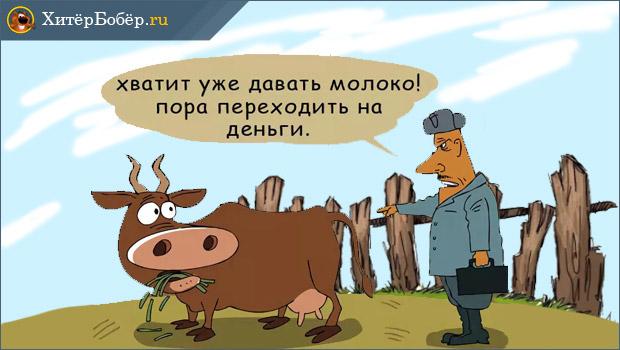 Как стать фермером
