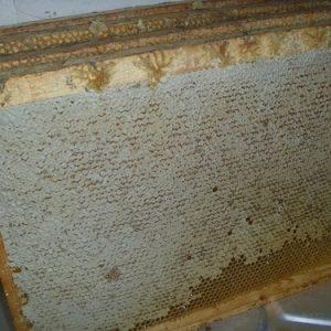 Переработанный мед