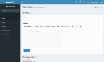 Visual Studio MVC project website with AdminLTE template - contact-page