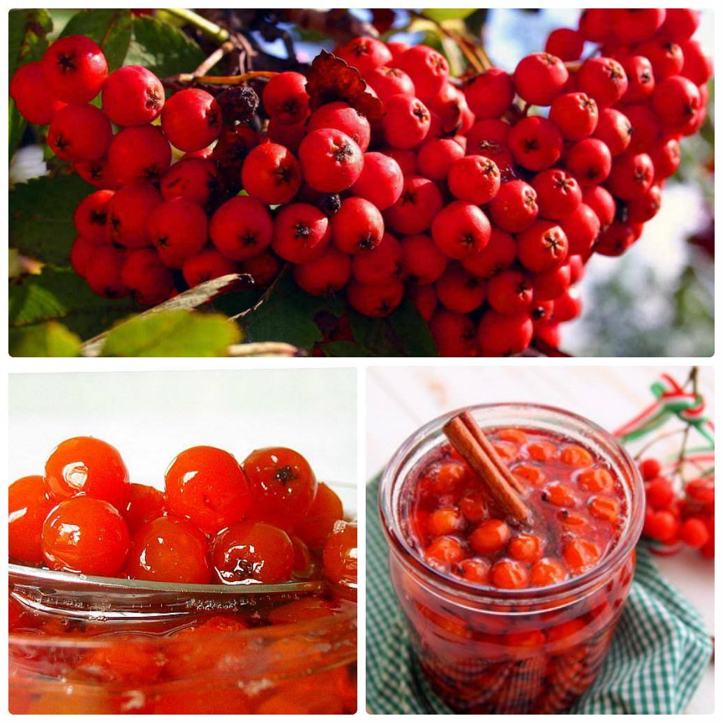 Варенье из рябины красной на зиму рецепты