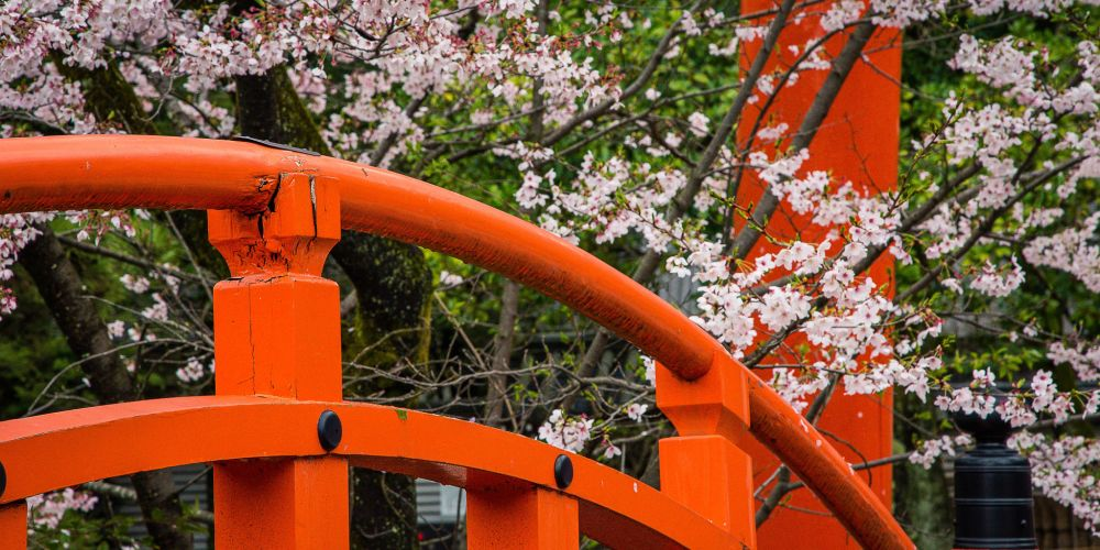 Japan_Orange_Bridge_Cherry_Blossoms
