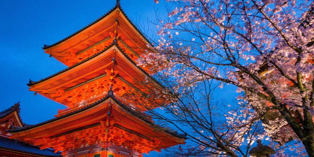 Blossoms_at_Kiyomizu_dera_TempleJapan