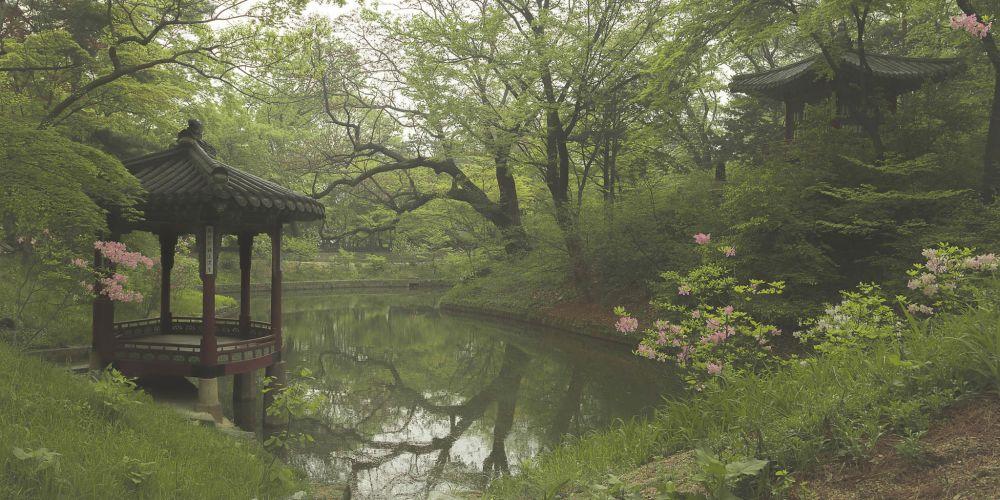 secret_garden_of_changdeokgung_palace