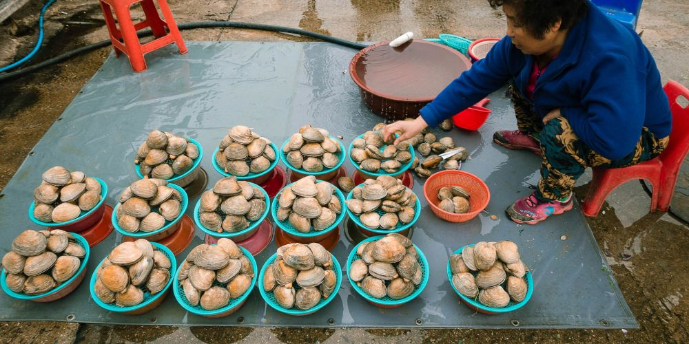 Jagalchi_Vendor_South_Korea