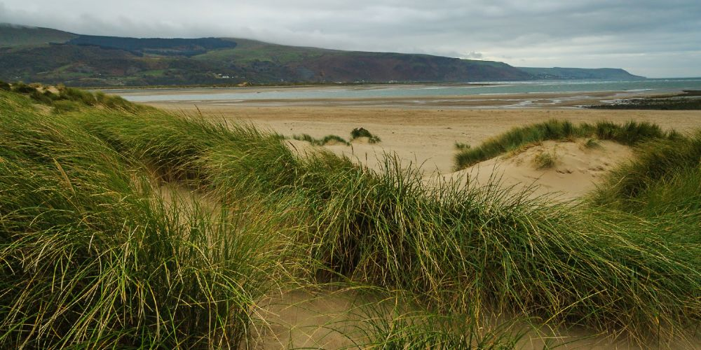 barmouth_dunes_wales_uk