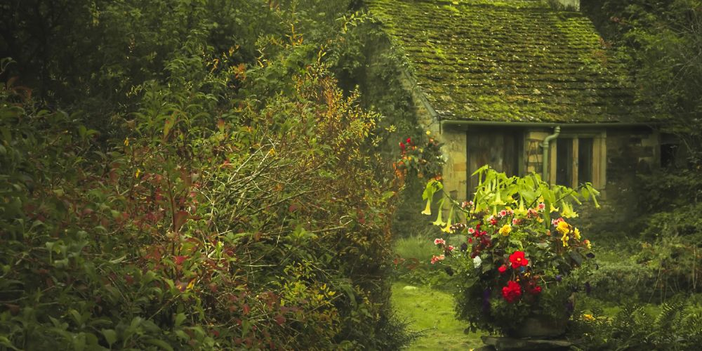 cozy_cotswolds_cottage_uk