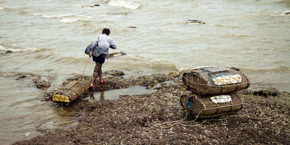 kep_crab_traps_cambodia
