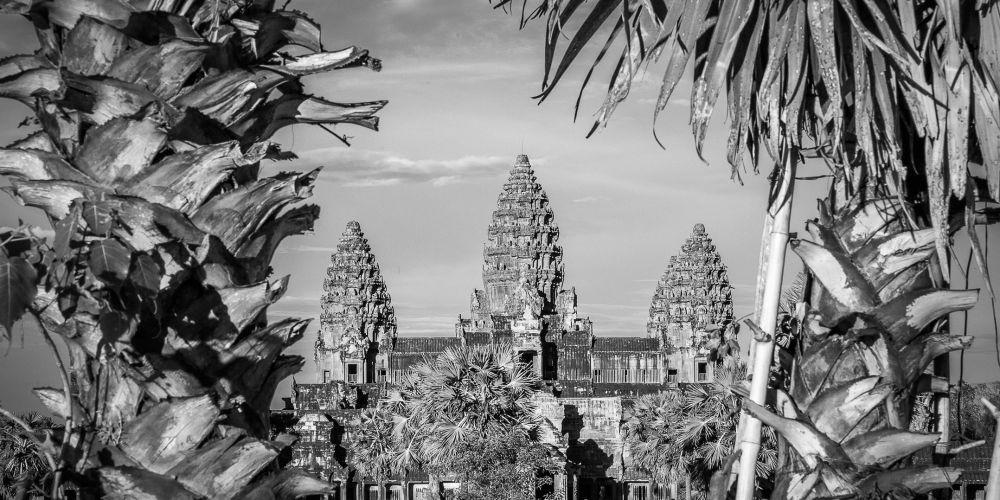 cambodia_angkor_wat_palms