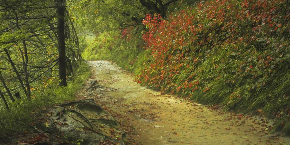 plitvice_lakes_trail_croatia