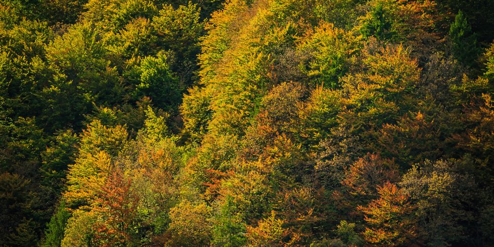 croatia_fall_colors