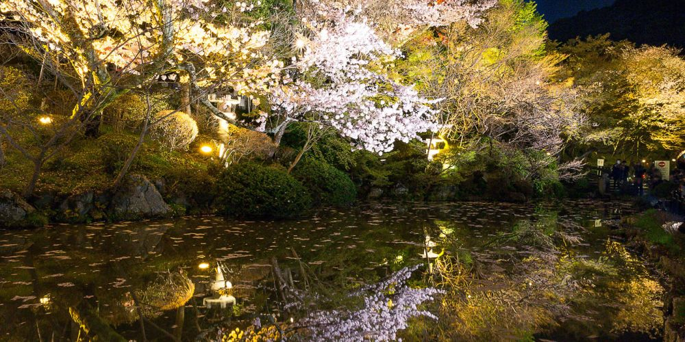 Japan_Pagoda_Night