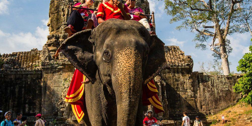 cambodia_elephant_angkor_thom