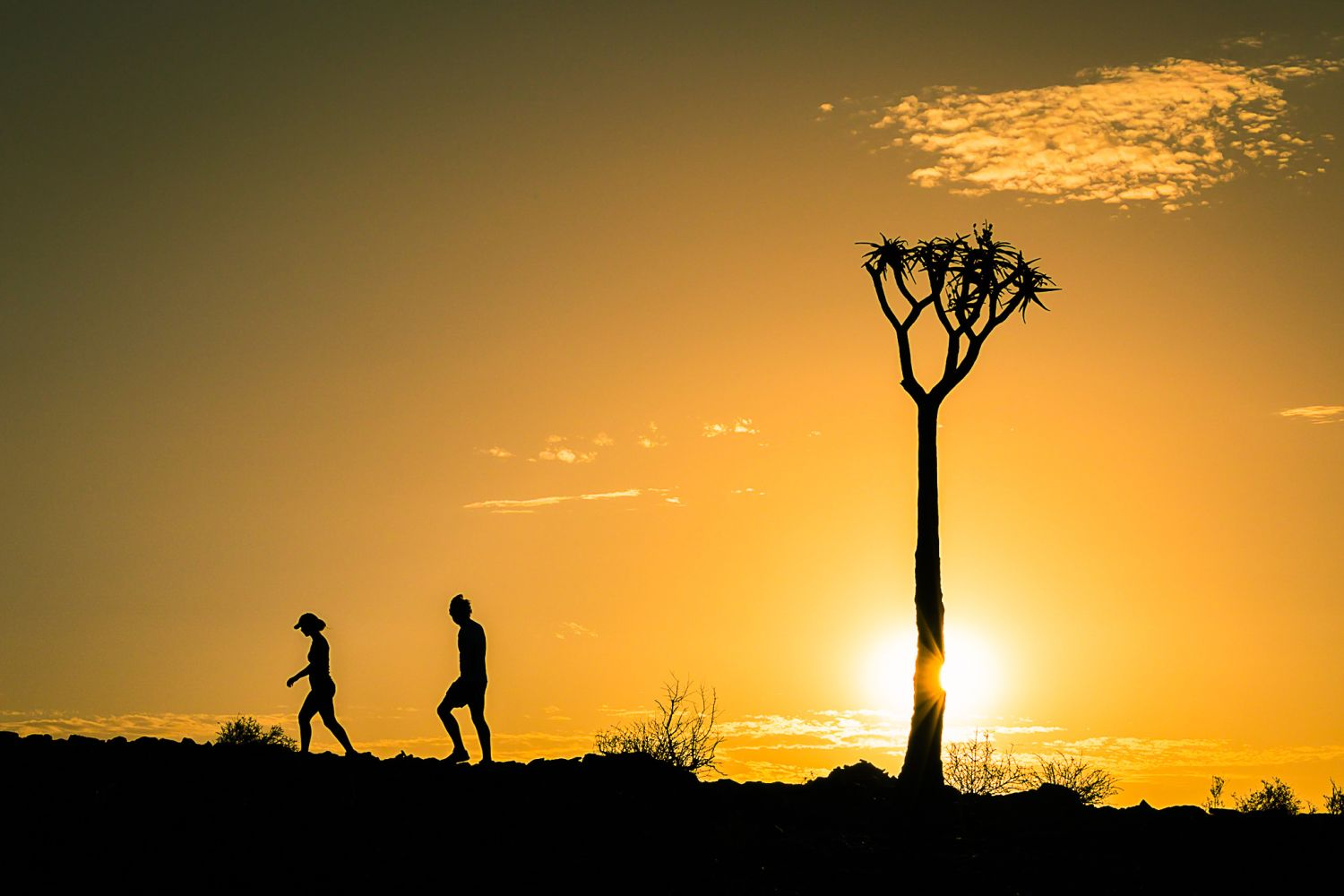 namibia_exploring_silhoutte