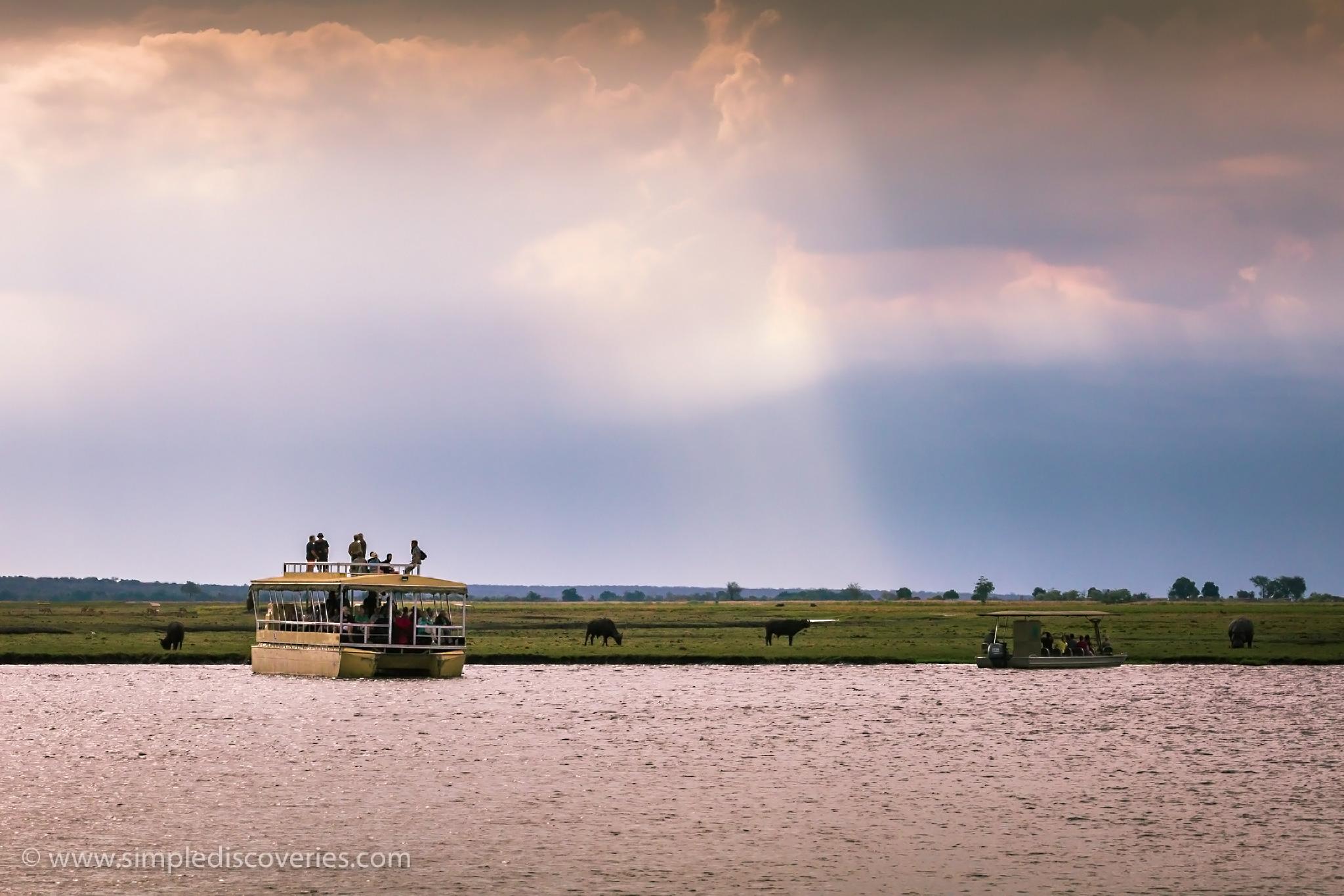 chobe_river_safari