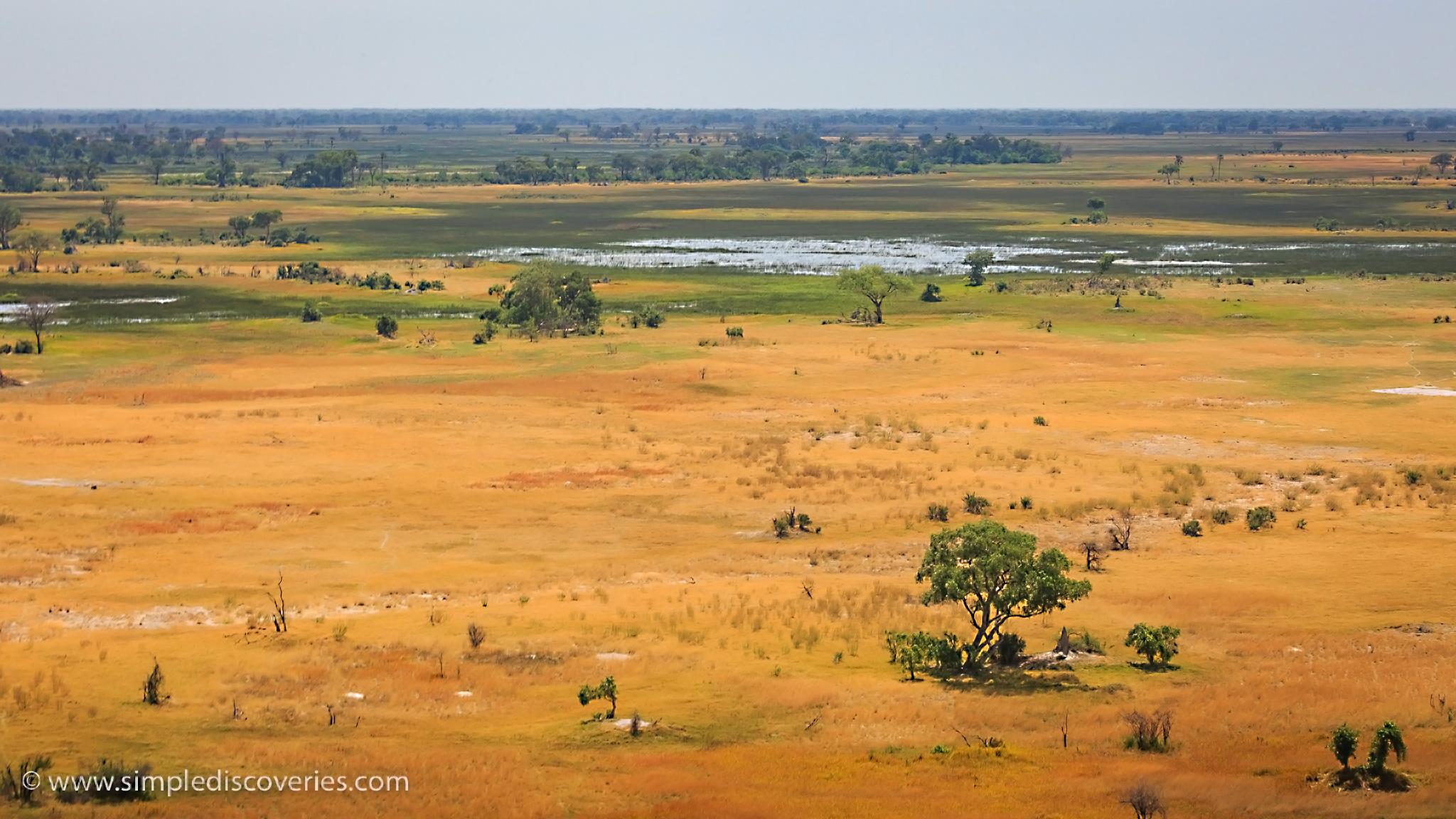 botswana_okavango_delta