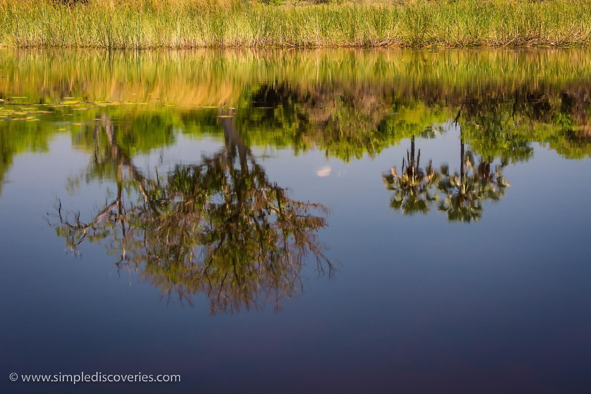 okavango_delta_reflection