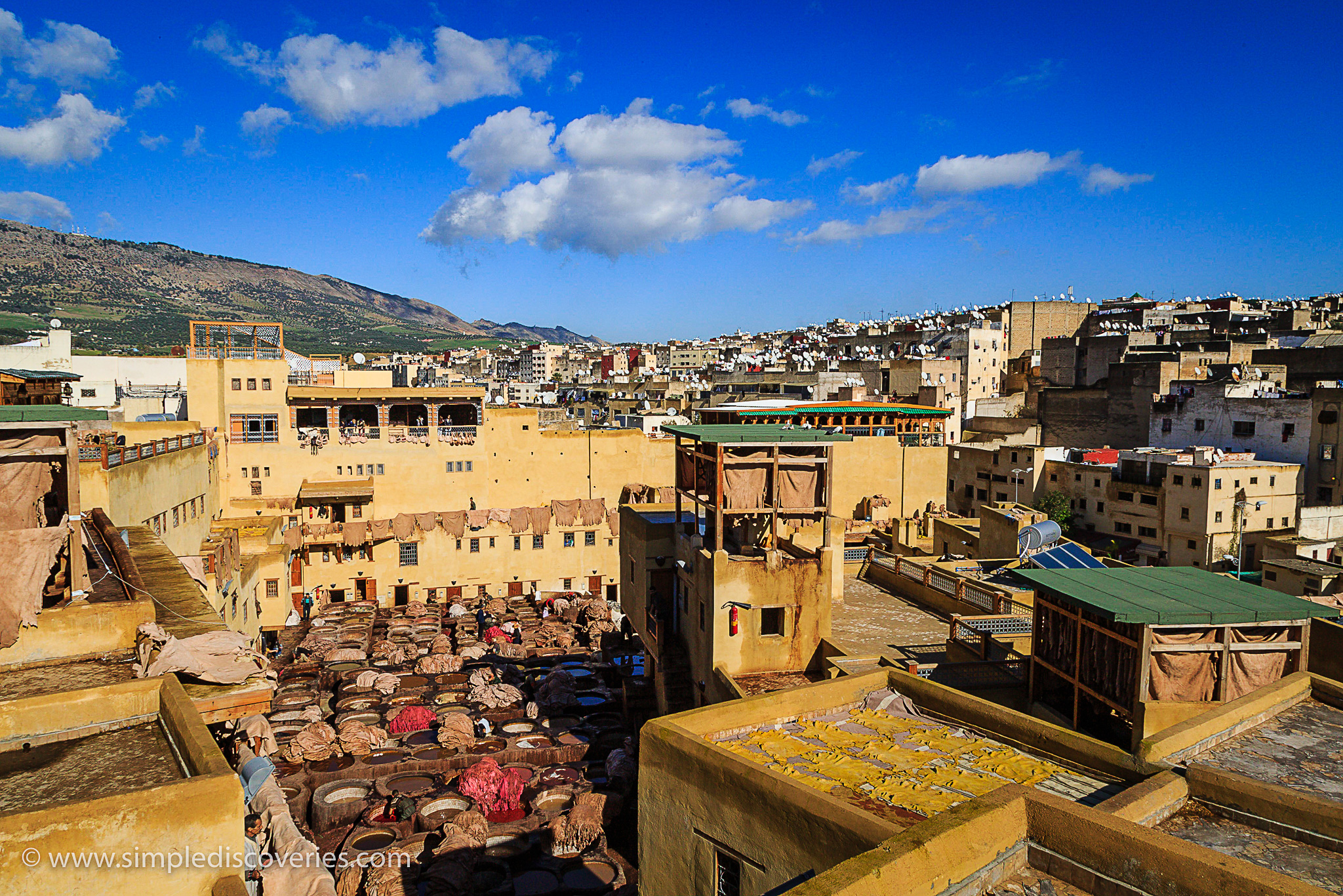 fes_morocco_tannery