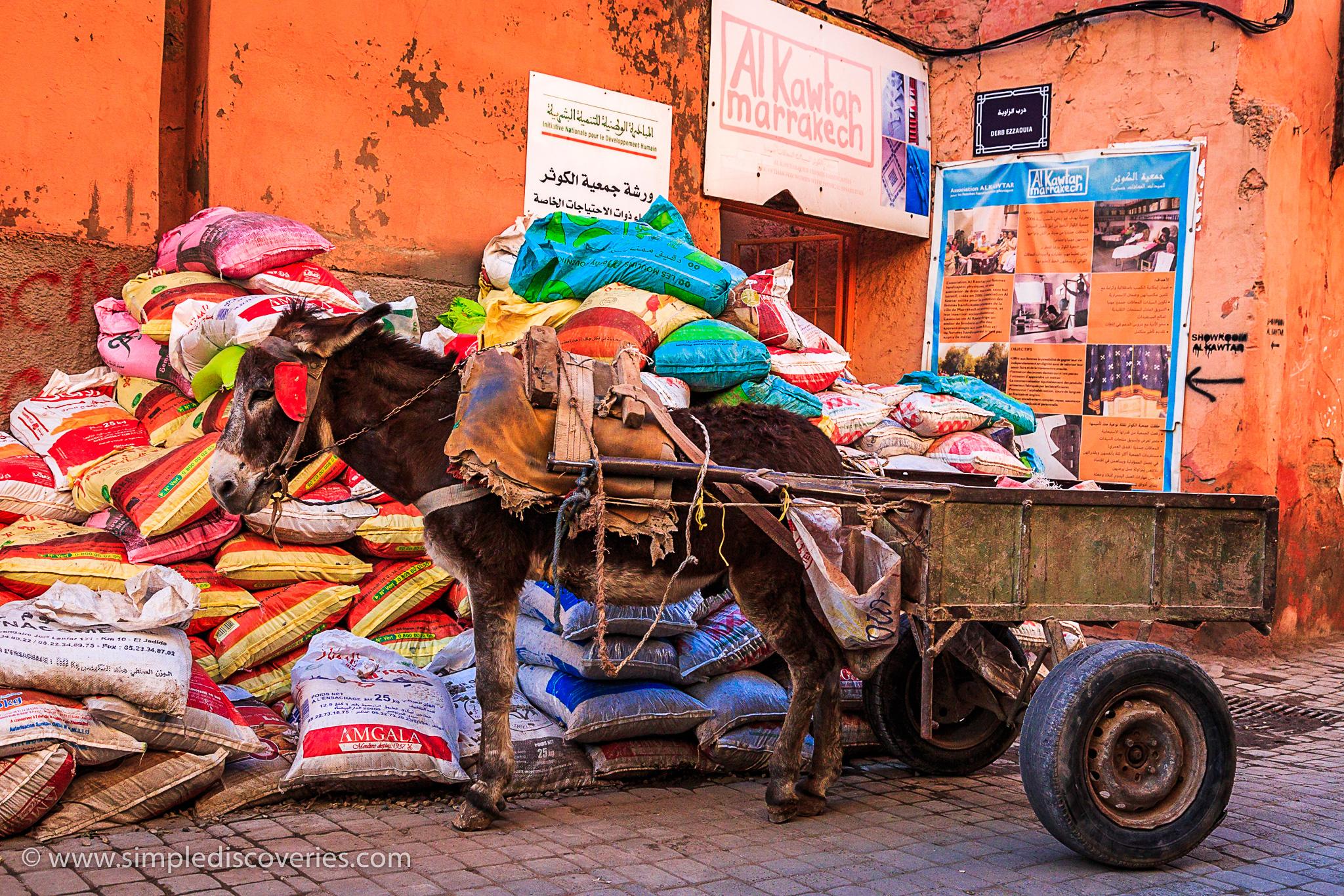 morocco_souk_cart
