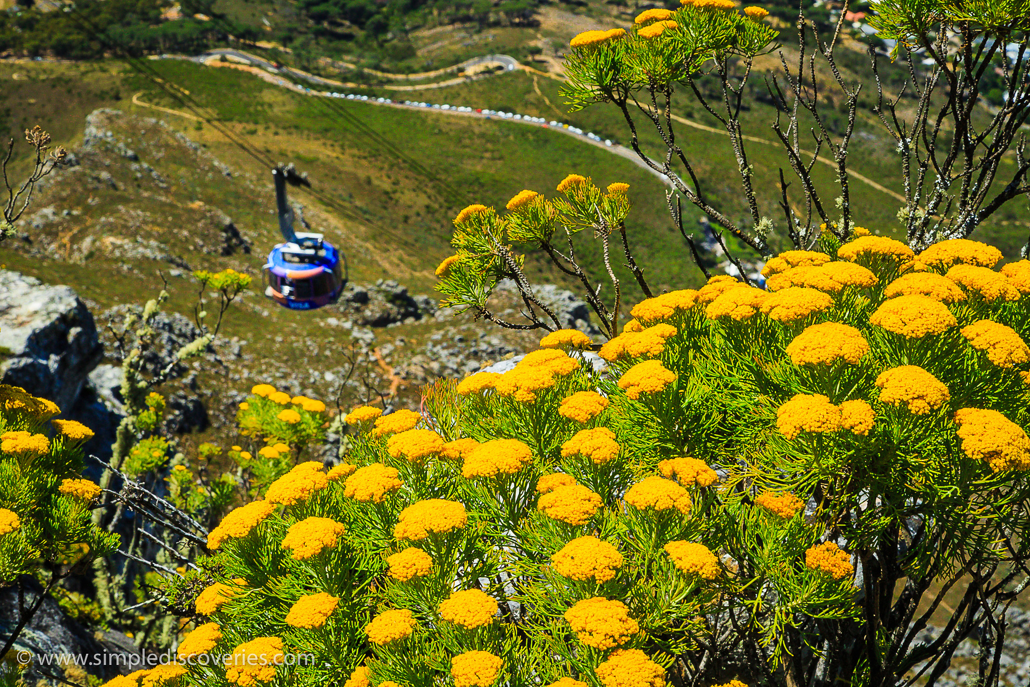 table_mountain_south_africa
